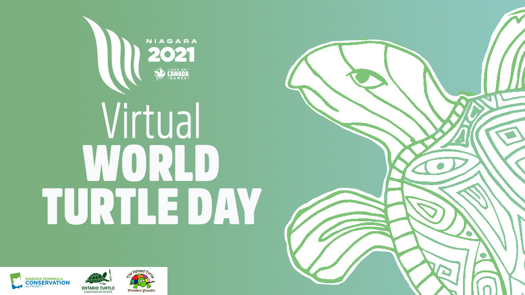 Virtual World Turtle Day